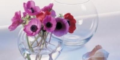 "Vaza ""Flora "", 1 buc. , Vaze,"